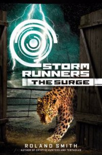 Cover image for The surge