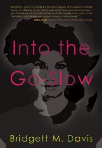 Cover image for Into the go-slow
