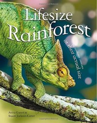 Cover image for Lifesize rainforest
