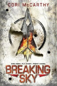 Cover image for Breaking sky