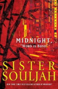 Cover image for Midnight and the meaning of love