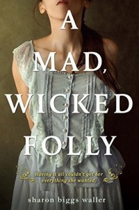 Cover image for A mad, wicked folly