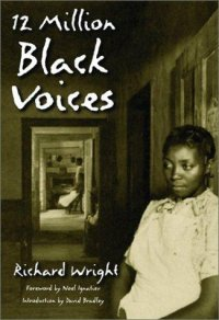 Cover image for 12 million black voices
