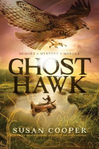 Cover image for Ghost hawk
