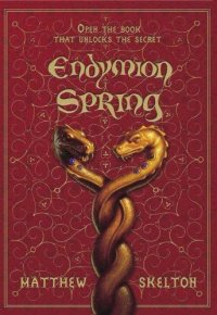 Cover image for Endymion Spring