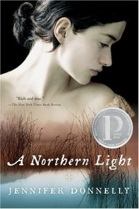 Cover image for A northern light