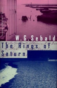 Cover image for The rings of Saturn