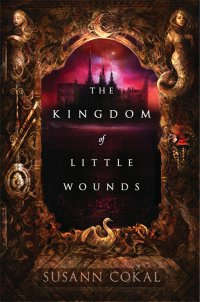 Cover image for The kingdom of little wounds
