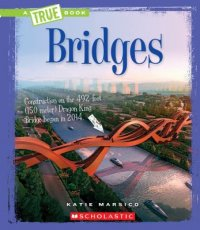 Cover image for Bridges