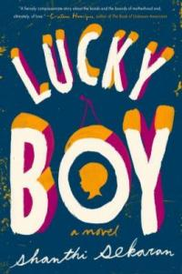 Cover image for Lucky boy