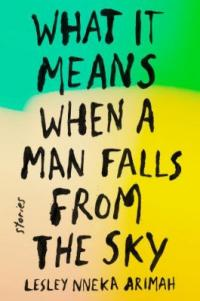 Cover image for What it means when a man falls from the sky