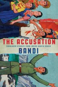 Cover image for The accusation