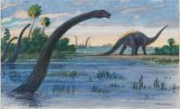 Cover image for The Diplodocus Could Grow up to Seventy-Five Feet Long, ca. 1900-1953.
