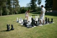 Cover image for Mega Chess (Checkout Four Bags)
