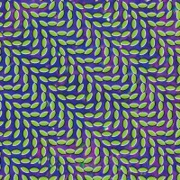 Cover image for Merriweather post pavilion