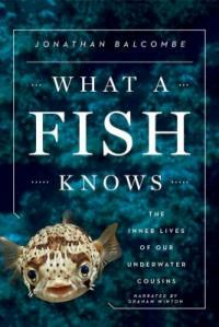 Cover image for What a fish knows : the inner lives of our underwater cousins