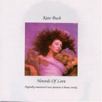 Cover image for Hounds of love