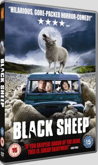 Cover image for Black sheep