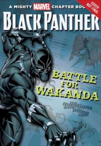 Cover image for Black Panther.