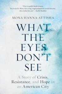 Cover image for What the eyes don't see : : a story of crisis, resistance, and hope in an American city