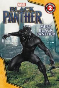 Cover image for Marvel Black Panther.