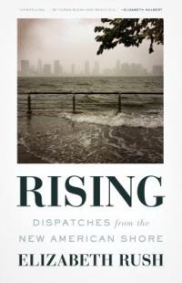 Cover image for Rising : : dispatches from the new American shore