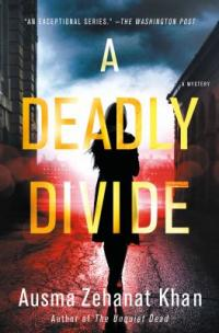Cover image for A deadly divide