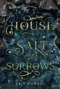 Cover image for House of salt and sorrows