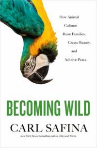 Cover image for Becoming wild : : how animal cultures raise families, create beauty, and achieve peace