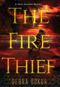 Cover image for FIRE THIEF.