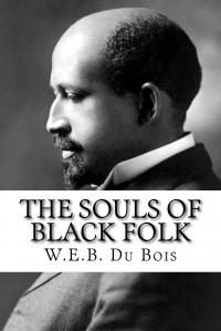 Cover image for The Souls of Black Folk